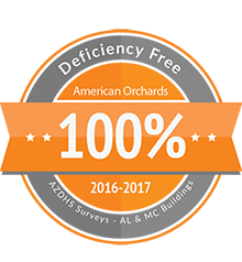 Arizona DHS Zero Deficiency Badge for 2016-2017
